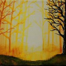 orangeforest